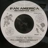 Pan American Astronaut Orchestra/Tour Of Jamaica / Under My Skin