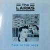 Larks/Pain In The Neck