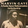 Marvin Gaye/A Funky Space Reincarnation